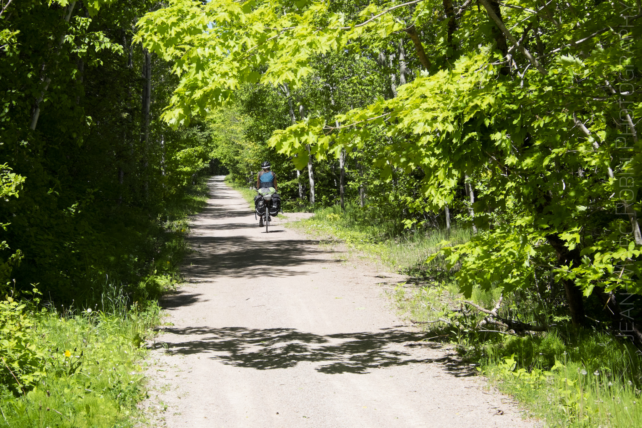 Rail trail near Mabou